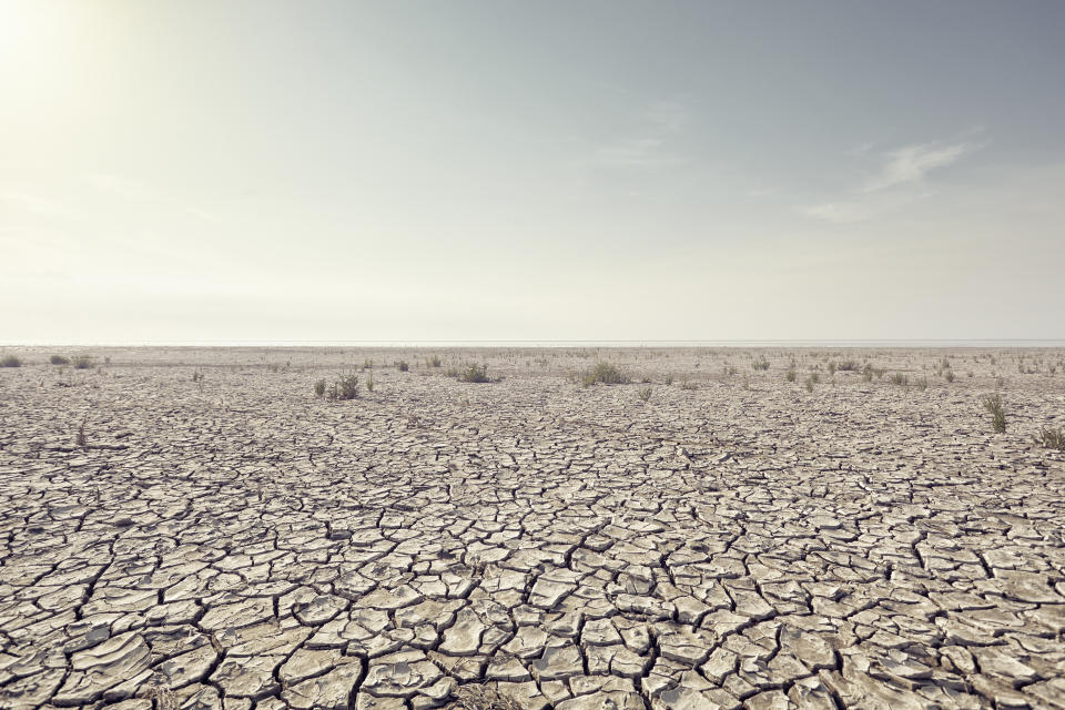 Open plain with cracked mud and clear sky