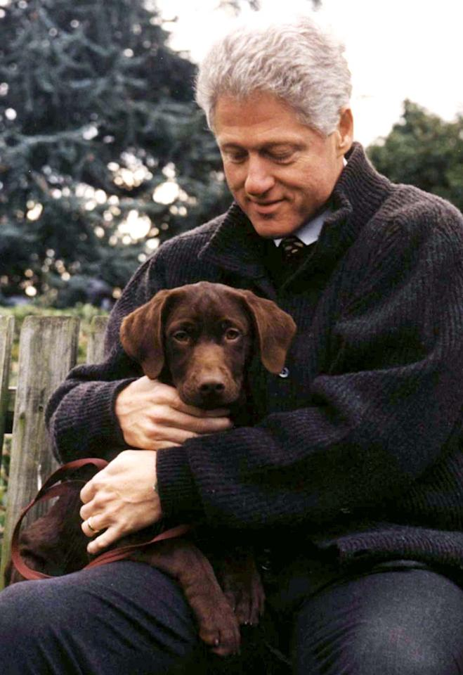 "US President Bill Clinton holds his new dog, a chocolate Labrador pup, in a photo released December 9. The yet-unnamed 3-month-old male pup will be moving into the White House as soon as it is housebroken. [According to White House spokesman Mike McCurry, Socks, the Clintons' cat, ""is taking it quite well."" ]"