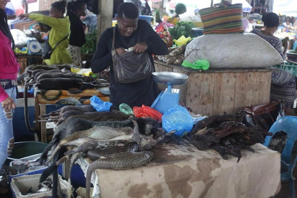 A market selling pangolin and other bushmeat in Gabon, March 2020.