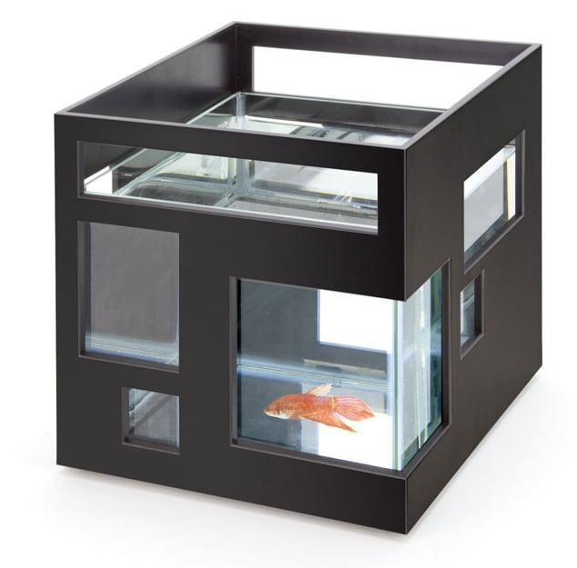 <p>If he loves fishes and has a chic-looking apartment, you might want to invest in this <span>modern fish hotel</span> ($26). </p>