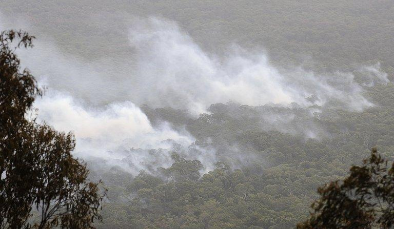 Smoke rises from the burning forest during the Kilmore East-Murrindini North fire on March 3, 2009. More than 10,000 people have joined the action against SP AusNet, which is majority owned by Singapore Power, over the Kilmore fire, which claimed 119 of the 173 lives lost