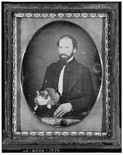 Believed to be the first photo of a cat, by an unknown photographer, taken 1840-1860 - Credit: Royal Photographic Society/Trov