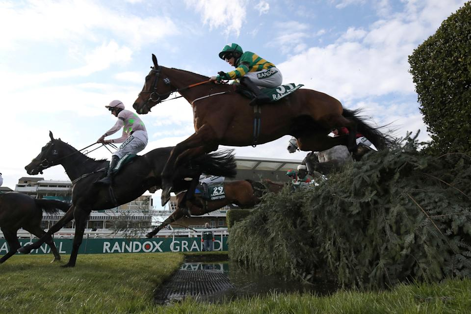 The Long Mile was put down following the 2021 Grand National (Getty)
