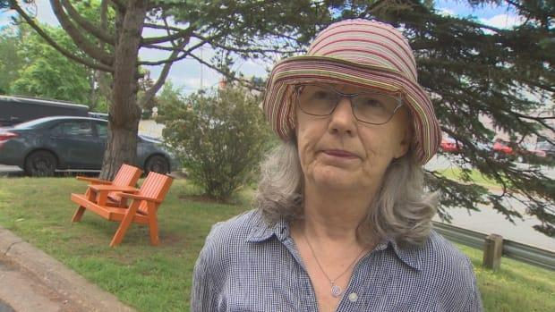 Pat Kipping of Halifax said she believes the anger directed at Premier Iain Rankin is misplaced. (Paul Palmeter/CBC - image credit)