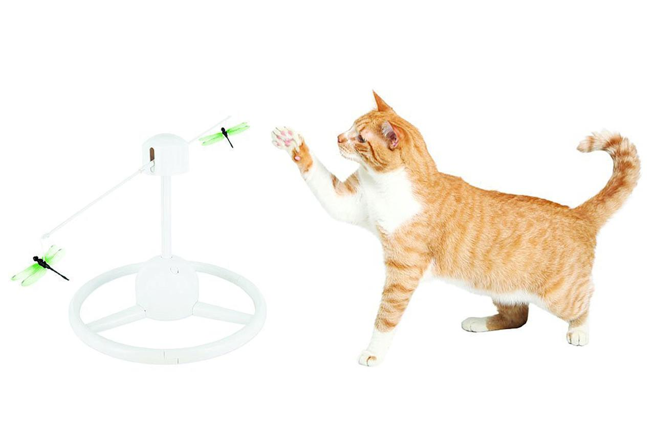 11 Futuristic Gadgets For Your Tech Savvy Pet