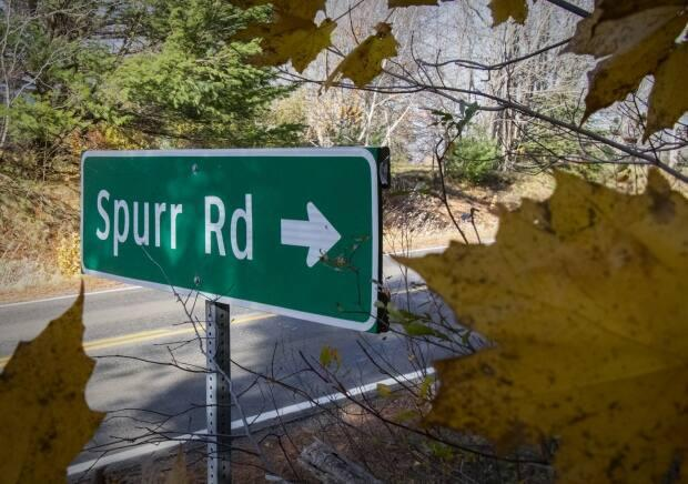 The woman testified that Ellis sexually assaulted her on Spurr Road in Annapolis County.