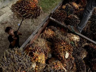 Malaysia says relations with India to improve after New Delhi lifts import duty on palm oil; to send a delegation