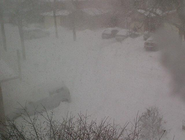 @chaser19: The view of my street in Thornhill from the upstairs window. #TOsnowpics pic.twitter.com/IP4FXHZA