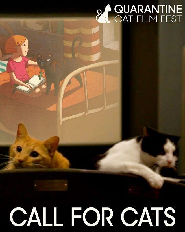 """<p>As any cat owner knows, living with a feline can feel like being in a high-stakes drama or roaring comedy (depending on the minute). Independent movie theaters are capitalizing on the undoubtedly golden at-home cat footage by announcing <a href=""""https://rowhouse.online/cats/"""" rel=""""nofollow noopener"""" target=""""_blank"""" data-ylk=""""slk:The Quarantine Cat Film Fest"""" class=""""link rapid-noclick-resp"""">The Quarantine Cat Film Fest</a>. Submit your best shelter-in-place cat videos and some will be edited together and set to music by Brian Mendelssohn, owner and manager of Pittsburgh's Row House Cinema. On June 19, people can <a href=""""https://drivewaysfilm.vhx.tv/checkout/driveways-row-house-online/purchase?rent=1"""" rel=""""nofollow noopener"""" target=""""_blank"""" data-ylk=""""slk:buy the festival film"""" class=""""link rapid-noclick-resp"""">buy the festival film</a> virtually. Proceeds will go to <a href=""""https://www.usatoday.com/story/entertainment/movies/2020/05/06/quarantine-cat-film-fest-fan-sourced-film-aid-closed-theaters/5173390002/"""" rel=""""nofollow noopener"""" target=""""_blank"""" data-ylk=""""slk:37 different independently-owned theaters"""" class=""""link rapid-noclick-resp"""">37 different independently-owned theaters</a> across the country that have been forced to close during the pandemic. </p><p><a href=""""https://www.instagram.com/p/B_iooxDl7XD/?utm_source=ig_embed&utm_campaign=loading"""" rel=""""nofollow noopener"""" target=""""_blank"""" data-ylk=""""slk:See the original post on Instagram"""" class=""""link rapid-noclick-resp"""">See the original post on Instagram</a></p>"""