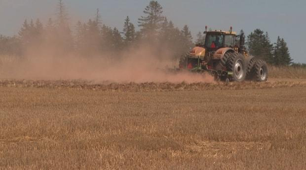 Dusty, dry fields are the reason farmers have been urging the province to end its moratorium on new high-capacity irrigation wells.