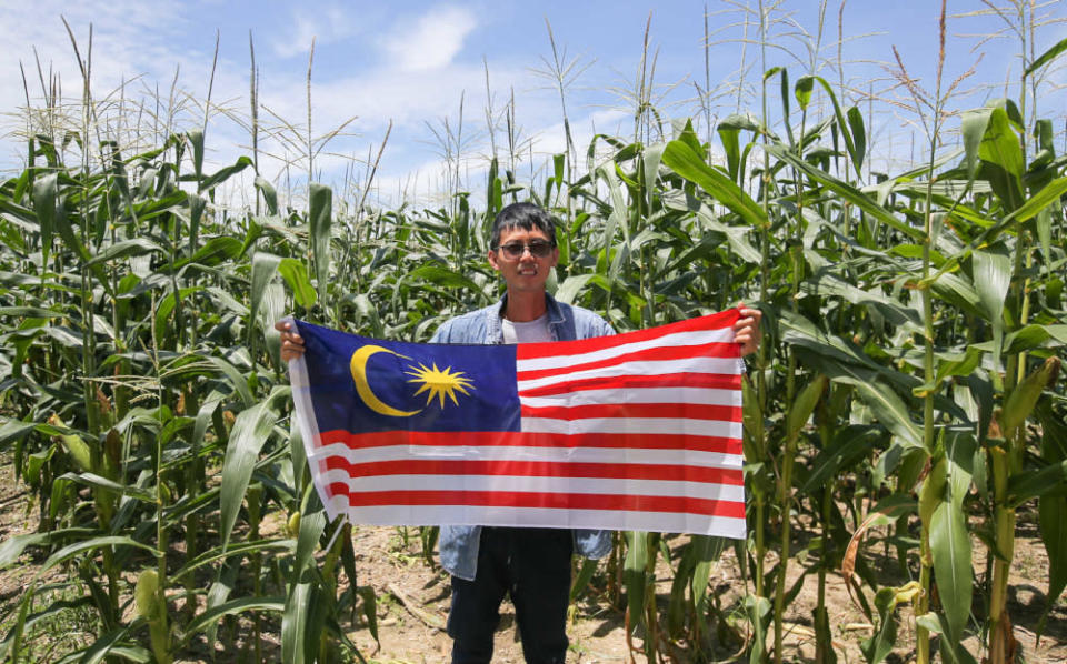 Pheong Kar Yu holds the Malaysian flag proudly to celebrate Malaysia Day at his farm in Taman Putra Indah, Bercham in Ipoh, Perak September 15, 2021. — Picture by Farhan Najib