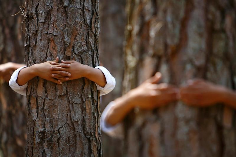 Israelis are Hugging Trees instead of Human to Beat Pandemic Blues