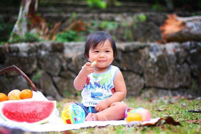 7 Tips On Feeding Toddlers While Travelling