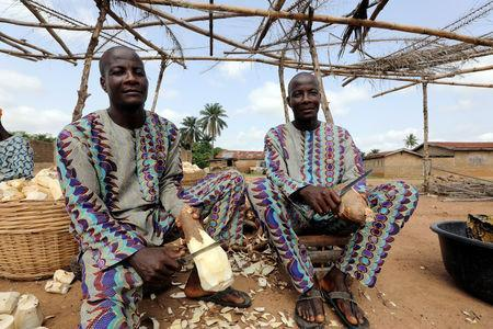 Twins Kehinde and Taiwo Aderogba peel cassava tuber at a processing centre in Igbo Ora town, Oyo State, Nigeria April 4, 2019. Picture taken April 4, 2019. REUTERS/Afolabi Sotunde