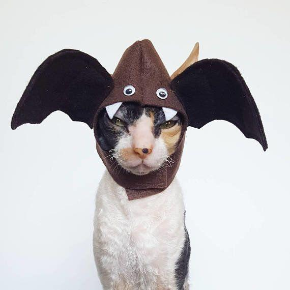 "Picture purrfect pet costumes. <a href=""https://www.etsy.com/shop/Ticketybootique"" target=""_blank"">Check out the shop</a>."