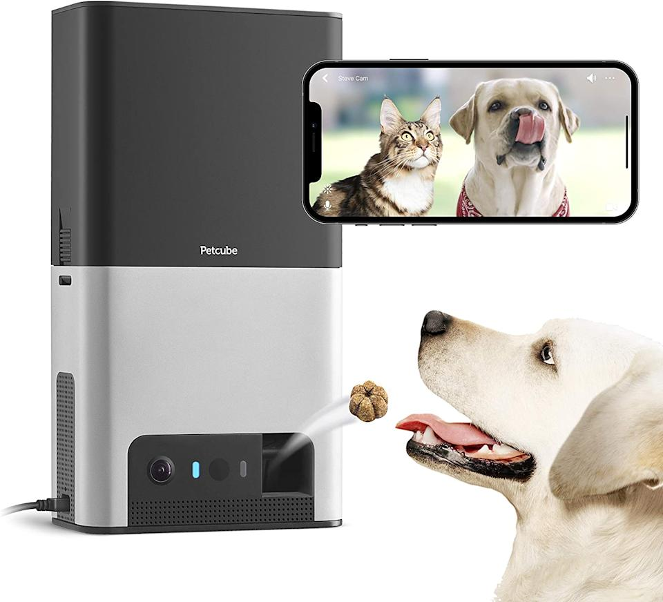 Save $123 on the Petcube Bites 2 Wi-Fi Pet Camera. Image via Amazon.