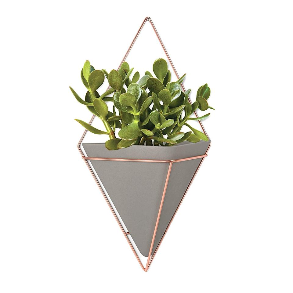 "<p>Hang an <a href=""https://www.popsugar.com/buy/Umbra-Trigg-Hanging-Planter-547527?p_name=Umbra%20Trigg%20Hanging%20Planter&retailer=amazon.com&pid=547527&price=21&evar1=casa%3Auk&evar9=47189500&evar98=https%3A%2F%2Fwww.popsugar.com%2Fhome%2Fphoto-gallery%2F47189500%2Fimage%2F47190619%2FUmbra-Trigg-Hanging-Planter&list1=shopping%2Csales%2Chome%20decor%2Cfurniture%2Csale%20shopping%2Chome%20shopping&prop13=api&pdata=1"" rel=""nofollow"" data-shoppable-link=""1"" target=""_blank"" class=""ga-track"" data-ga-category=""Related"" data-ga-label=""https://www.amazon.com/Umbra-Hanging-Planter-Concrete-Copper/dp/B01ARNV2VA/ref=sr_1_30?keywords=home+decor+rivet&amp;qid=1581052729&amp;sr=8-30"" data-ga-action=""In-Line Links"">Umbra Trigg Hanging Planter</a> ($21, originally $30) or two or three in your hallway.</p>"