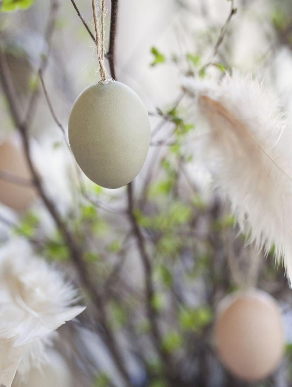 """<p>In Sweden, Easter trees are called """"Påskris"""" and are often seen decorated with feathers in addition to hand painted eggs and other ornaments. <br></p>"""