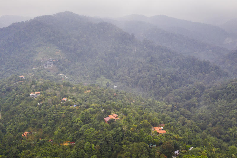 This aerial image shows the tropical forest surrounding the Dusun eco-resort in Negeri Sembilan, Malaysia, Sunday, Aug. 11, 2019. A massive search operation enters its second week for Nora Anne Quoirin, who was discovered missing by her family on Aug. 4, from the Dusun resort. Source: Joshua Paul via AP