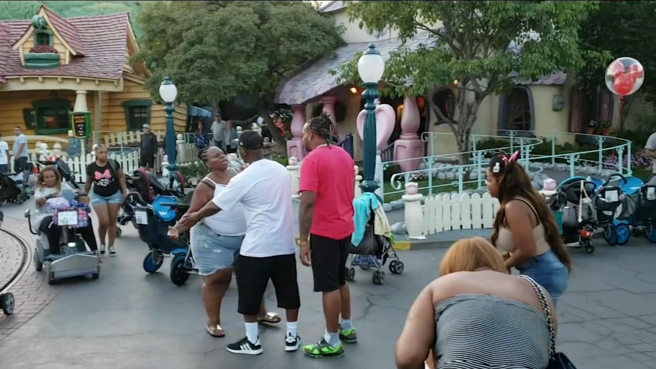 Image result for 3 charged for Disneyland brawl caught on camera