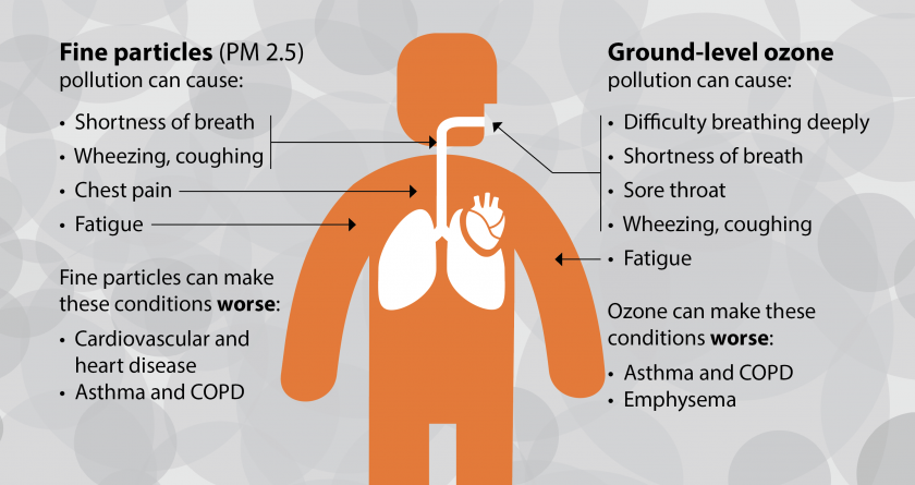Air quality guidelines updated after 15 years