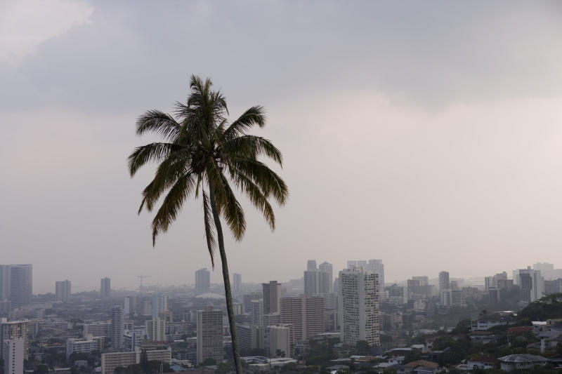 FILE - This April 26, 2008 file photo shows a palm tree standing out against the Honolulu skyline due to high levels of volcanic fog shrouding Oahu in Honolulu. Part of what makes living in Hawaii so pleasant is the gentle breeze. Nowadays, experts say, these breezes, called trade winds, are declining, a drop that's slowly changing life across the islands. (AP Photo/Marco Garcia, file)
