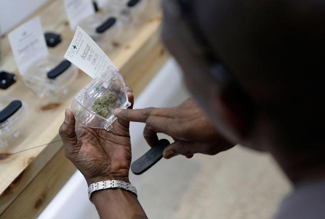 <p>A man examines marijuana for sale at The Source dispensary, Saturday, July 1, 2017, in Las Vegas. (Photo: John Locher/AP) </p>