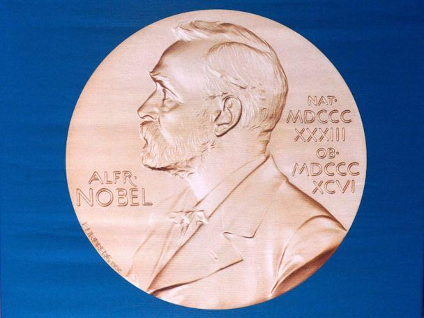 PHOTO: In this file photo taken on Oct. 05, 2015, the laureate medal featuring the portrait of Alfred Nobel is shown. (Jonathan Nackstrand/AFP/Getty Images, FILE)