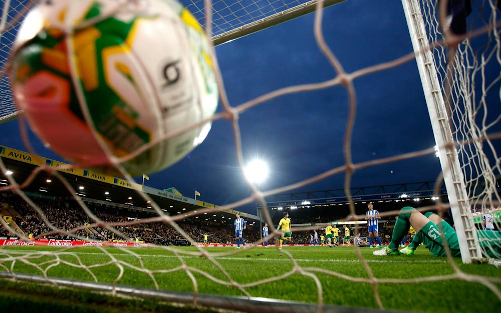 David Stockdale -Norwich City 2 Brighton & Hove Albion 0: David Stockdale's brace of own-goals denies Seagulls Championship title - Credit: Getty Images