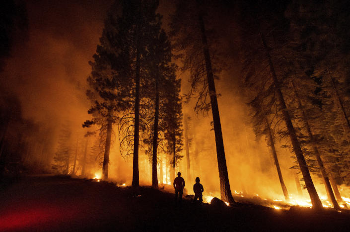 Cal Fire Capts. Derek Leong, right, and Tristan Gale monitor a firing operation, where crews set a ground fire to stop a wildfire from spreading, while battling the Dixie Fire in Lassen National Forest, Calif., on Monday, July 26, 2021. (AP Photo/Noah Berger)