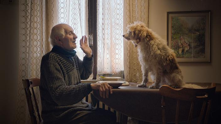 """Old men and their fungus-sniffing dogs are at the heart of the documentary """"The Truffle Hunters."""""""