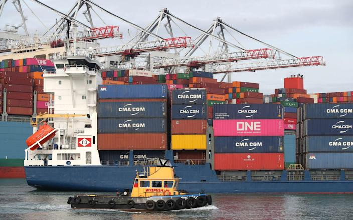 Container ships passing near Southampton Docks last year - Andrew Matthews /PA