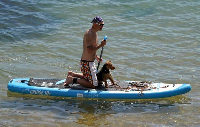 A person paddleboards with their dog in the sea near to Durdle Door