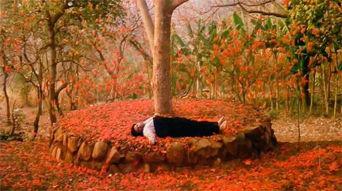 <p>The novel by Saratchandra Chattopadhya has been adapted into movies many-a-times. But Shah Rukh Khan is unarguably the best Devdas yet. His last scene under the flame tree, on a bed of Delonix Regia will stay etched in our memory forever. One can watch the movie a gazillion times and a gazillion times will one tear up. </p>
