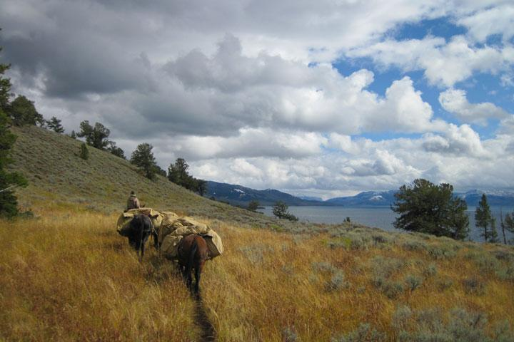 Yellowstone National Park, Montana - This photo captures the boundless sky of the west, the warm richness of sage and the independent spirit of the cowboy. The adventure of riding into the backcountry and experience of wilderness are inspirational. © World Wildlife Fund/Jack Kerivan