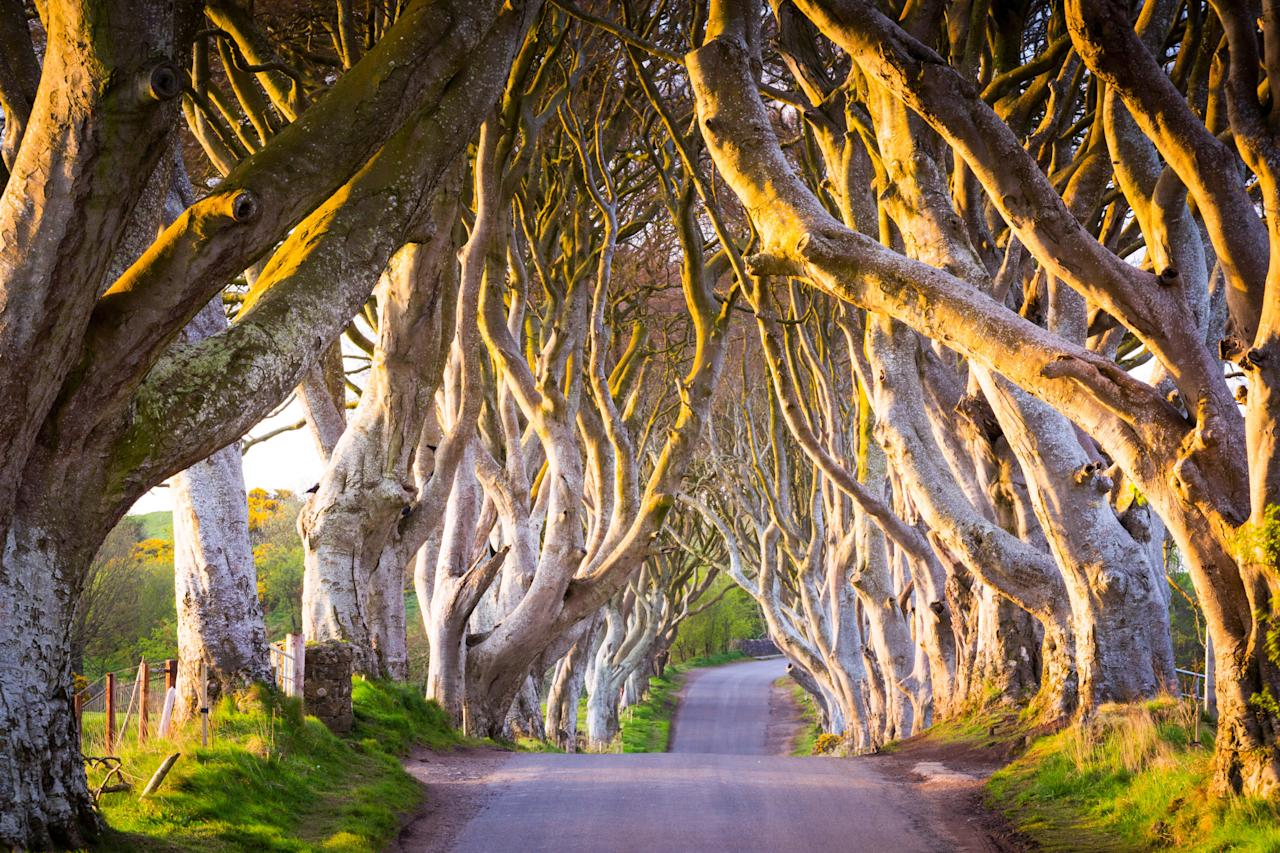 "If there's one positive cliche about Ireland it's that it's a land of some of the friendliest people you'll encounter. Of course, it's downright beautiful, to boot: From postcard-perfect Kerry and Cork to the dramatic Causeway Coast, to <a href=""https://www.cntraveler.com/story/how-to-visit-skellig-michael-irelands-star-wars-island?mbid=synd_yahoo_rss"">imposing Skellig Michael</a>, it's as if Ireland has no bad angles. <a href=""https://www.cntraveler.com/story/flight-deal-us-to-dublin-from-dollar375-round-trip?mbid=synd_yahoo_rss"">Flights via Aer Lingus</a> to this green land are affordable and plentiful, and a balance of whimsy and modern luxuries (hotels, restaurants, and culture) ensure <a href=""https://www.cntraveler.com/story/how-to-plan-a-family-trip-to-ireland?mbid=synd_yahoo_rss"">there's something for everyone</a>. The home of Joyce, Shaw, and Beckett, <a href=""https://www.cntraveler.com/destinations/dublin?mbid=synd_yahoo_rss"">Dublin</a> is also growing into a tech hub for the likes of Google, Facebook, and Airbnb—a boon for local businesses and an inducement for more global, cultural development. Nearby <a href=""https://www.cntraveler.com/stories/2014-11-18/a-shopping-guide-to-belfast?mbid=synd_yahoo_rss"">Belfast</a> (an hour-and-a-half north from Dublin by car) may be part of Northern Ireland, but it too is a draw as its come into its own."