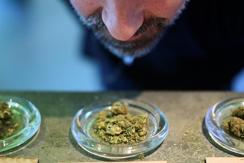 "A picture taken on June 5, 2019 shows a man smelling a sample of Marijuana buds, often simply called weed or pot, which is the unprocessed form of the female cannabis plant, at the ""Hemp Embassy"" store in Milan, one of the first shops in Italy dedicated to cannabis. - Hemp is ""legal"" marijuana as the THC psychotropic substance is blocked, but can be used for textiles, food, cosmetics and other purposes. (Photo by Miguel MEDINA / AFP) (Photo credit should read MIGUEL MEDINA/AFP/Getty Images)"
