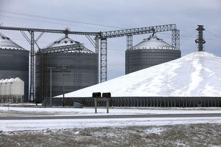 A mountain of grain sits in a storage pile, as midwestern grain farmers and merchants struggle to find storage space after three years of record harvests, near Boone, Iowa, U.S., March 11, 2017. REUTERS/Scott Morgan