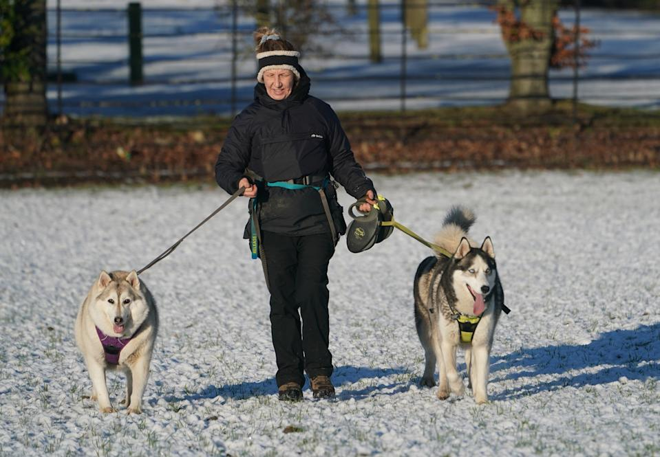 A dog walker takes a pair of huskeys out in the snow in Whitworth, County Durham. (PA Images via Getty Images)