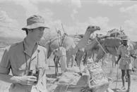 <p>In 1971, Prince Charles went on a four-day safari through the Ngare Ndare Valley in Kenya. If only smartphones were around then...because I bet the photos would've been <em>amazing</em>.</p>