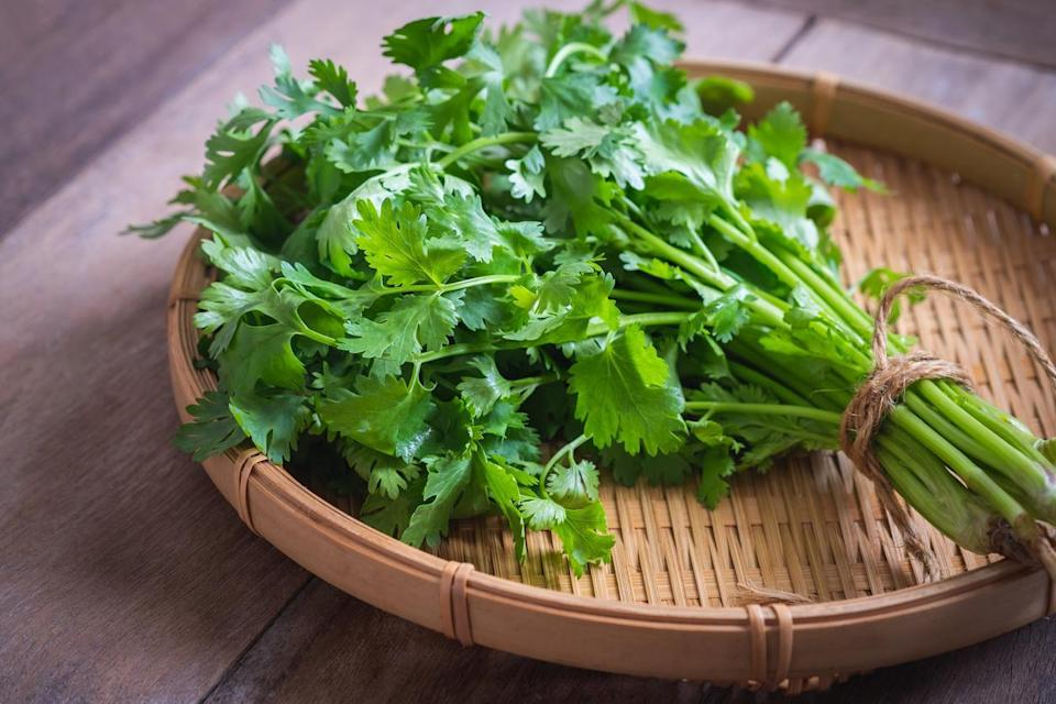 """<p>Fresh herbs are worth investing in at the store or even <a href=""""https://www.theactivetimes.com/lifestyle/easy-vegetable-garden-grow-home?referrer=yahoo&category=beauty_food&include_utm=1&utm_medium=referral&utm_source=yahoo&utm_campaign=feed"""" rel=""""nofollow noopener"""" target=""""_blank"""" data-ylk=""""slk:growing at home"""" class=""""link rapid-noclick-resp"""">growing at home</a> — a few freshly picked leaves can add a lot of flavor to a dish. But you typically only use a few leaves at a time. And too often, the rest of those fresh herbs you've picked or bought turn brown and wilt before you're able to use them. Often, this is due to improper storage. With too much moisture, herbs get slimy; not enough moisture, and they'll dry out. There are some tricks to storing herbs correctly. Soft herbs include herbs such as cilantro, basil and parsley that have soft, easily broken leaves. Treat these herbs like you would a bouquet of flowers. Trim the ends of the herbs and place them in a small jar with a few inches of water or other container with the leaves facing up. Basil can be left on your counter at room temperature. Change the water every couple of days to make sure it's clean. All other types of soft herbs should be placed in the refrigerator in their makeshift """"vase."""" Cover the tops with a plastic bag before storing to prevent the leaves from losing moisture to the dry refrigerator air. Stored this way, your herbs will ideally last a couple of weeks.</p>"""