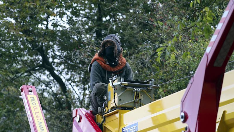 'I will stay in this tree' – HS2 protesters stand firm as eviction bid restarts