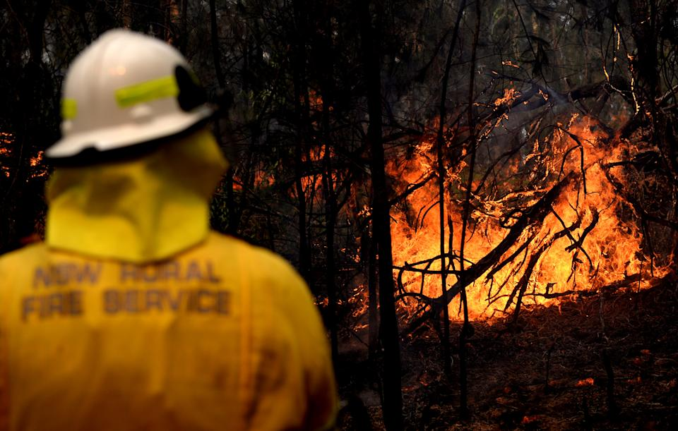 NSW Rural Fire fighters establish a backburn  in Mangrove Mountain, New South Wales, in December 2019. Source: AAP