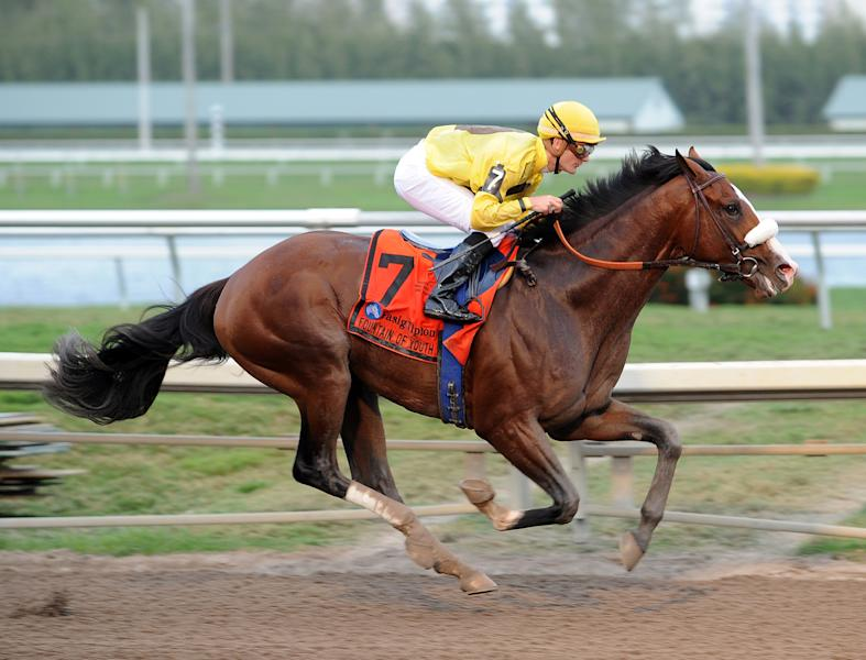 FILE - In this Feb. 26, 2012, file photo, provided by Gulfstream Park, Union Rags, ridden by Julien Leparoux, captures the Fountain of Youth horse race at Gulfstream Park in Hallandale Beach, Fla. Picking the favorite for the Kentucky Derby may be as tough as picking the winner. Without a breakthrough star heading into the May 5 Derby, there's a stable full of 3-year-olds worthy of the leading role as horse to beat when a full field of 20 spring from the starting gate at Churchill Downs. Union Rags, who opened on top and now finishes No. 1 on the AP's final Run to the Roses' Top 10 list of Derby contenders. (AP Photo/Gulfstream Park, File)