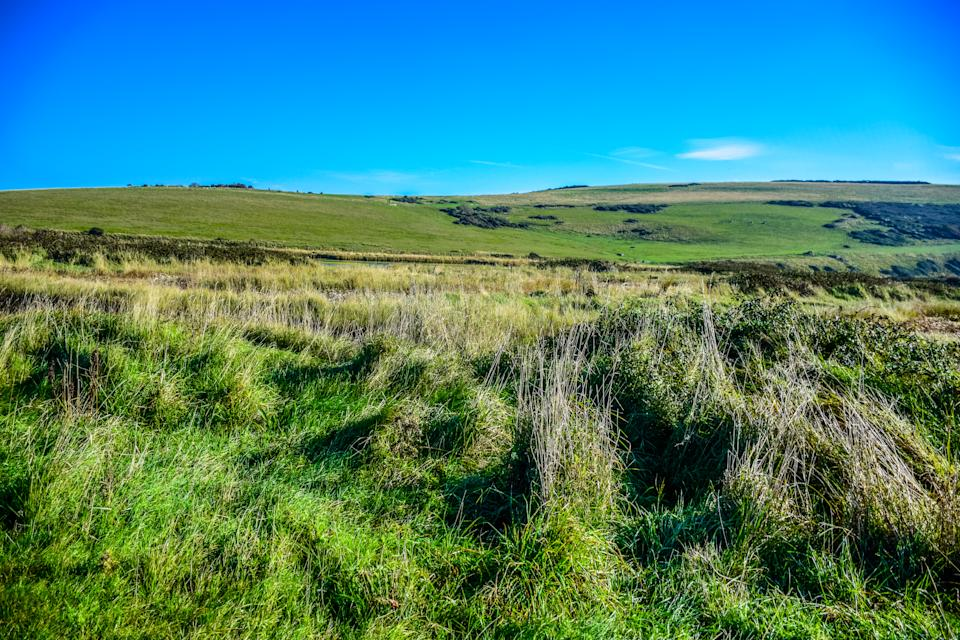 Countryside landscape on the way to Seven Sisters White Chalk Cliff in South Downs National Park, East Sussex, Eastbourne, England, United Kingdom