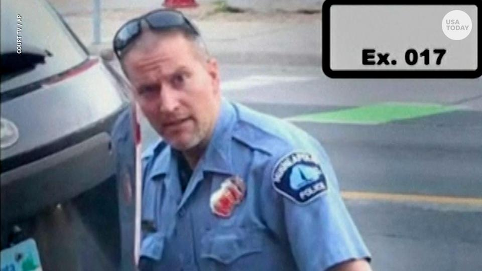 Minneapolis police officer Derek Chauvin on May 25, 2020.