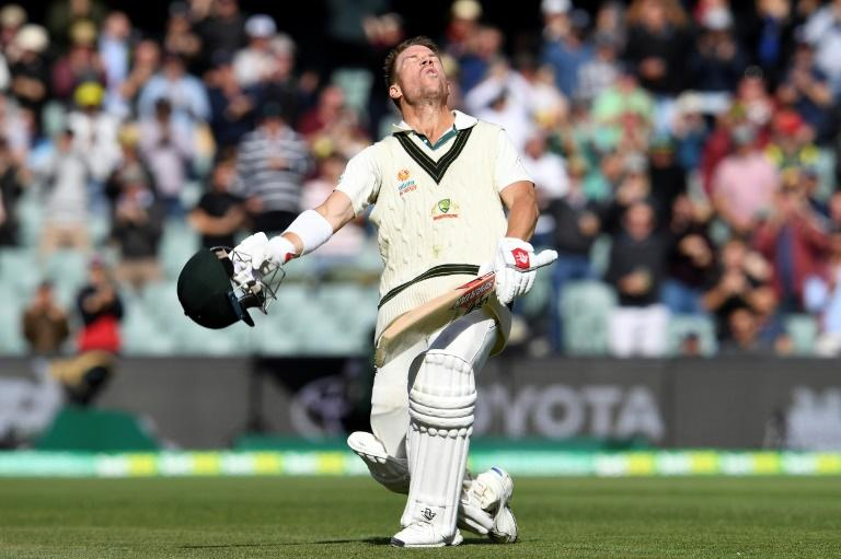 Australia's David Warner smashed an unbeaten 335 against Pakistan, the 10th highest score ever in Test cricket