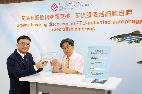 Professor YIP Shea-ping (right), Head of PolyU's Department of Health Technology and Informatics said that this ground-breaking discovery will be included in the new guidelines on autophagy research this year.