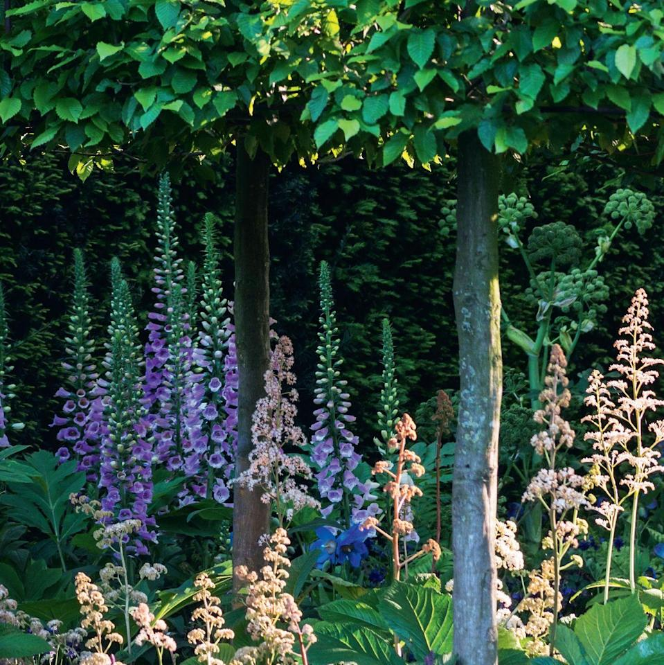 Photo credit: Glorious Gardens, by Country Living|The garden-collection, Flora Press/Joanna Kossak