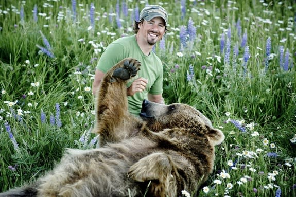 "Naturalist Casey Anderson and his adopted bear Brutus in a meadow. Brutus is Anderson's ""best friend."""